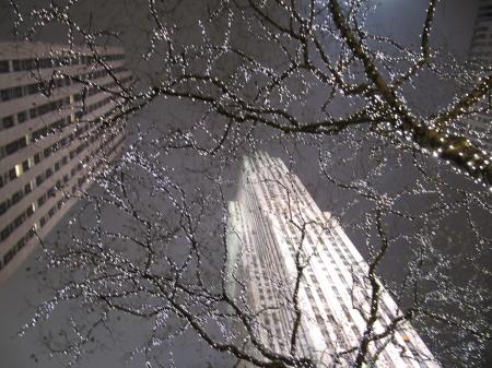 Det finns en rad webbkameror i New York